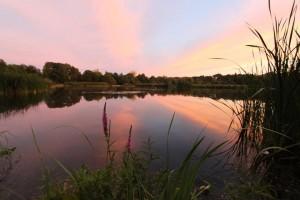 Råstasjön - vår älskade sjö, som vi gemensamt ska rädda. Foto: Maria Thiessen.